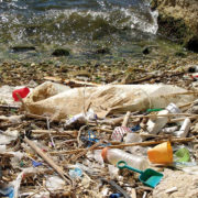The challenge: Plastic-waste at the shoreline and in the sea